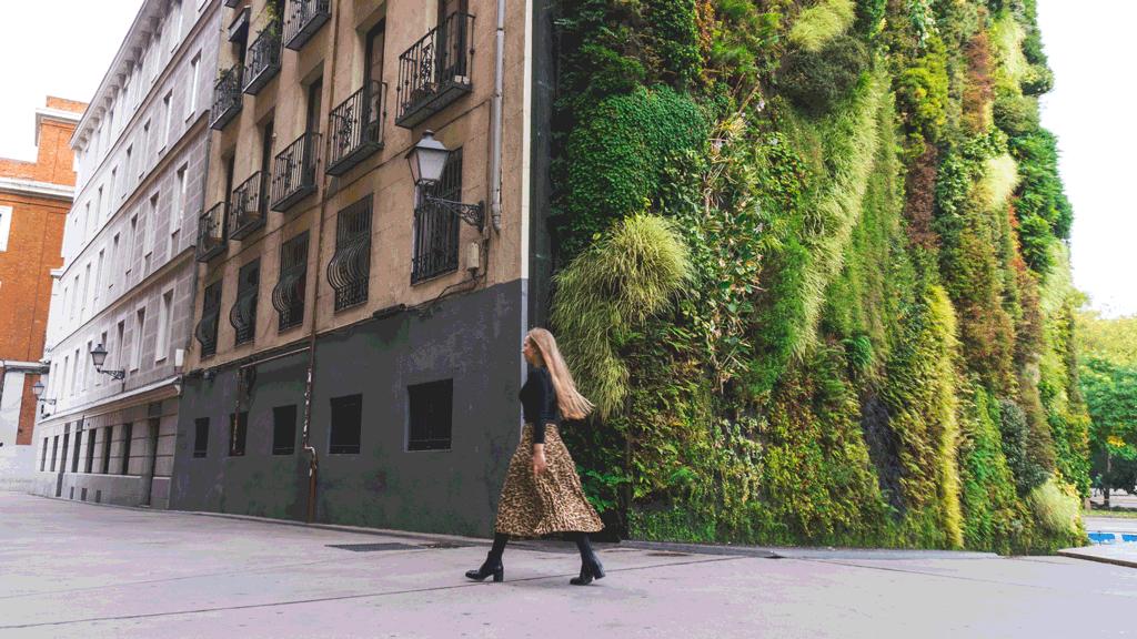 madryt-zwiedzanie-atrakcje-hiszpania